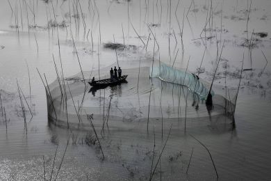 Fishing nets in the area of Dhaka, Bangladesh