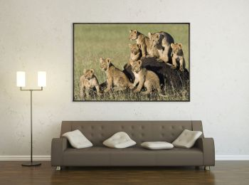 Kenya, lion and cubs on a termite mound