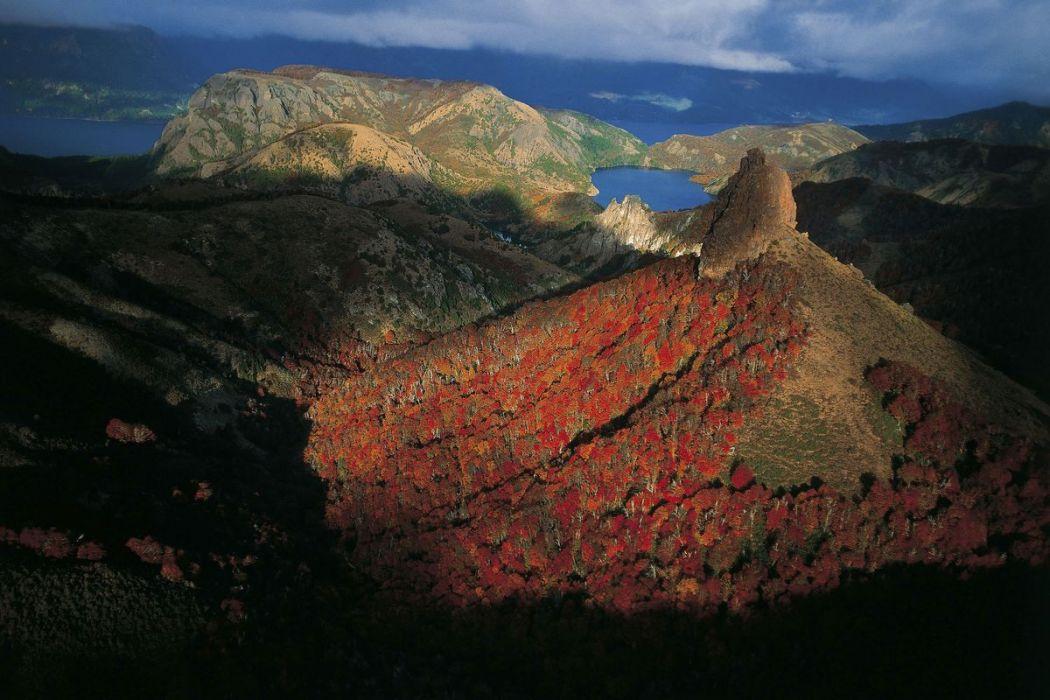 Hêtres, Argentine