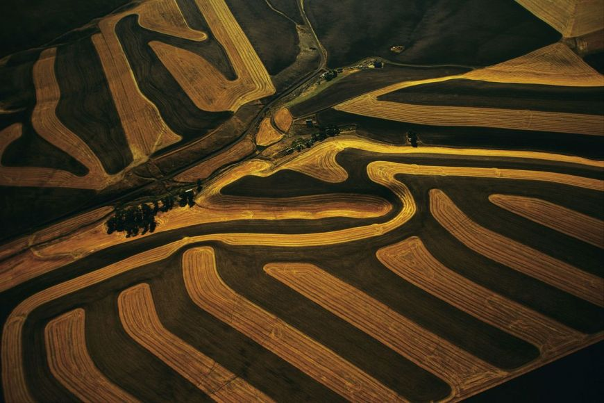 Farming, Washington, United States