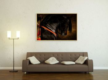 Andalusian horse Tejedor VII