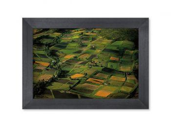 Champs cultivés, Equateur