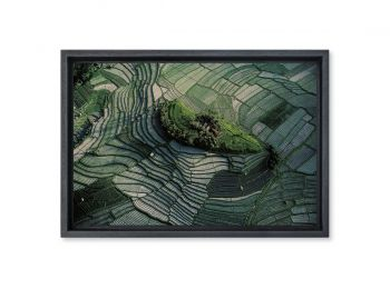 Terraced rice fields of Bali, Indonesia