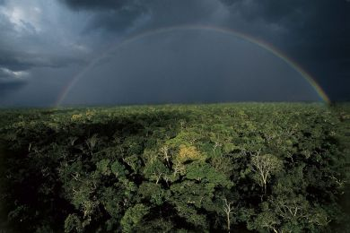 A storm over the Amazon Rainforest, Brazil
